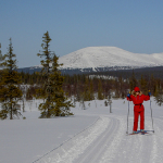 muonio-hiihtaja-2